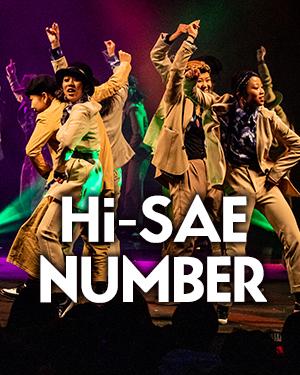 Hi-SAE NUMBER